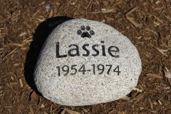 engraving on stone rock gift for the garden in mulch