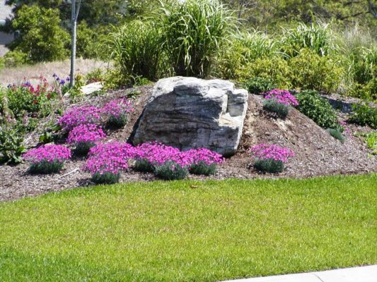 large, gray, stone boulder in a garden with purple flowers and greenery