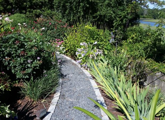 cobblestone edges a gravel pathway in a garden of greenery and flowers by a waterway