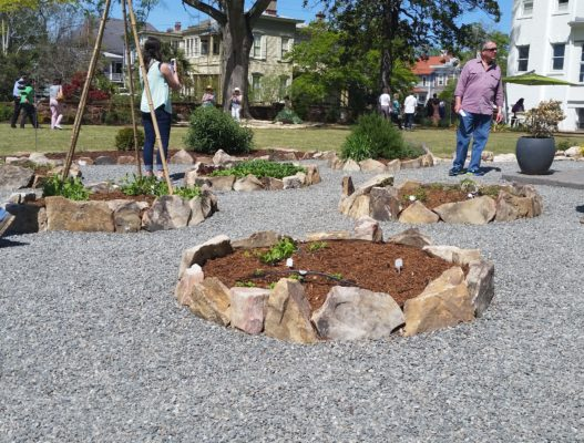 stone edges form small, round gardens among gravel pathways at dudley mansion