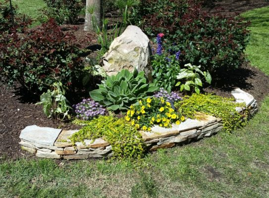 a stacked stone retaining wall forms a flower garden anchored by a large stone boulder