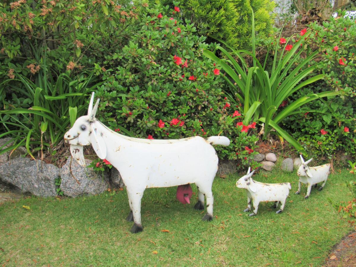 metal goat folk art in stone garden