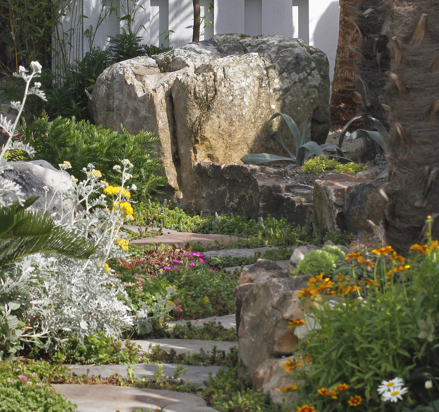 stone garden DIY pathway with boulder and succulents