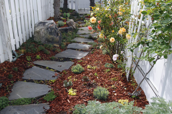 natural flagstone pathway in red mulch with rose bush and boulder